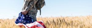 Soldier Holding Flag in Field